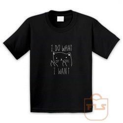 I Do What I Want Kitties Parody Youth T Shirt