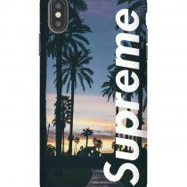 Supreme Freedomsky iPhone Case