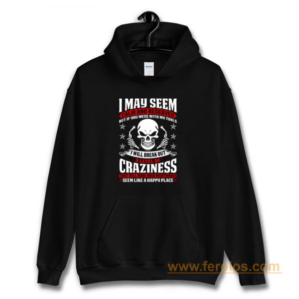May Seem Calm And Reserved Hoodie